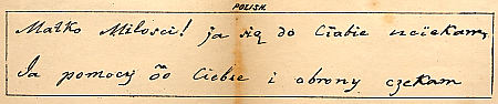 Sample of Mezzofanti's handwriting in Polish : Click to enlarge picture